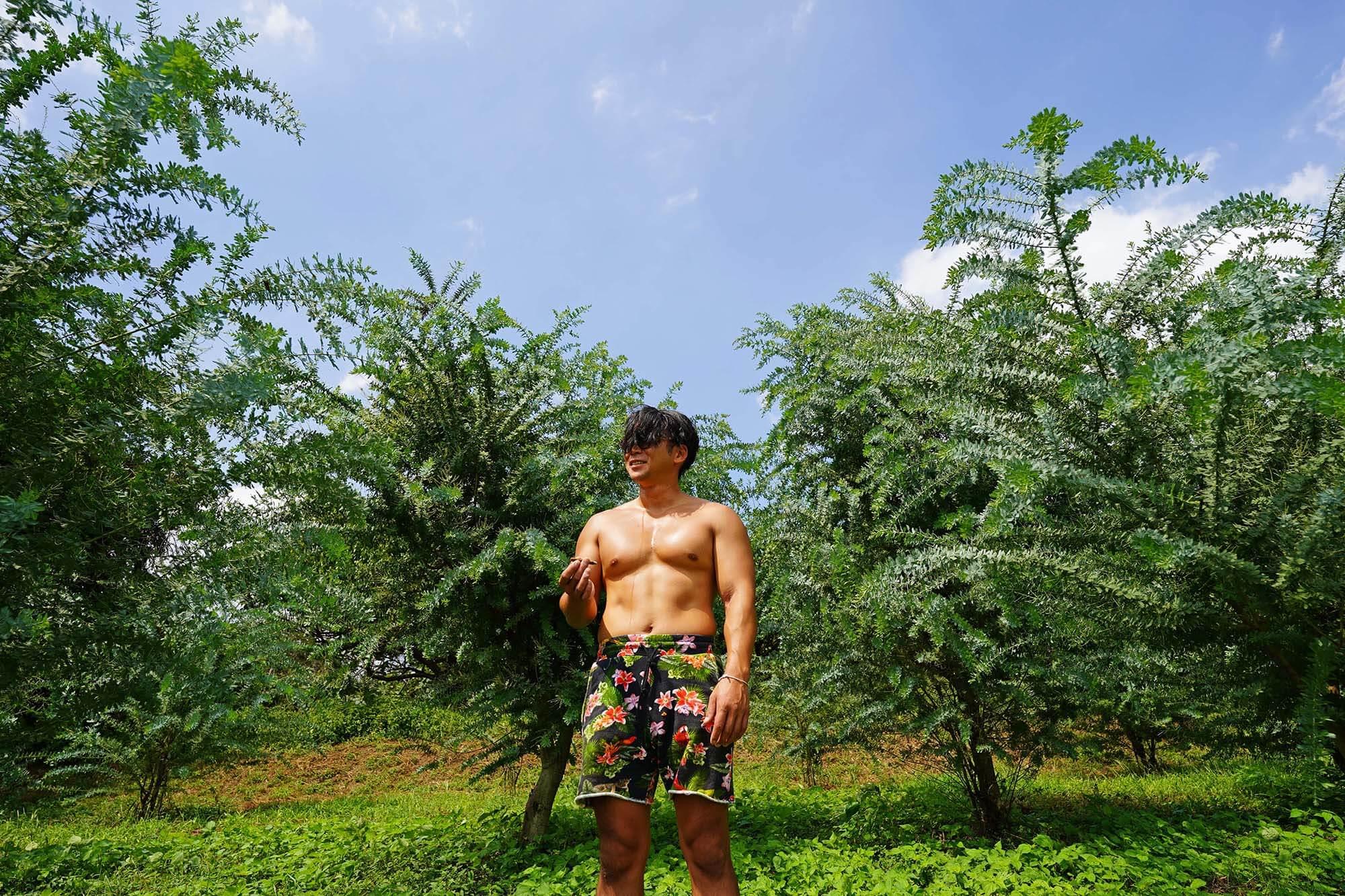 ワトルギャラリー|ミモザ・ユーカリ・バラを取り扱う生産者団体「Mr.Wattle(ミスターワトル)」